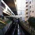 二ノ橋から三ノ橋方面 2019-1-24