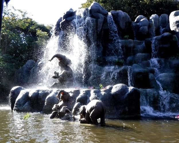 Photos: 象の水浴び場に来てしまいました。せっかくだからちょっと見学していきましょう。 2019-1-27