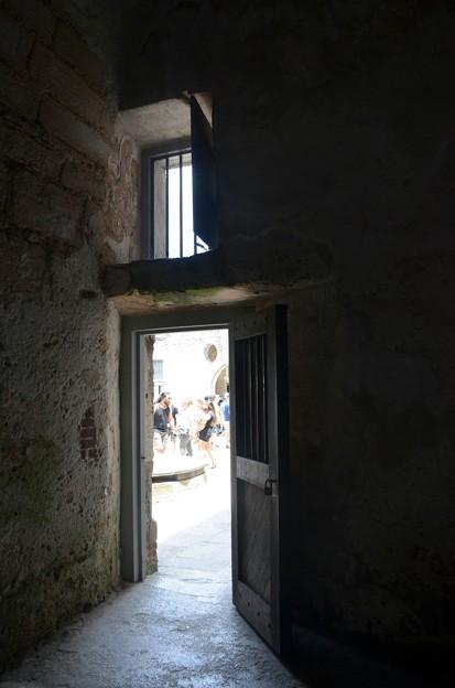The Door 5-11-19