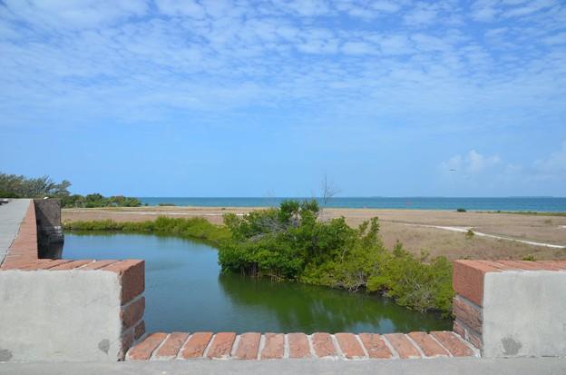 Photos: The Ocean 6-9-19