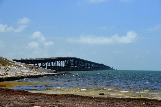 Photos: Bahia Honda Bridge 6-9-19