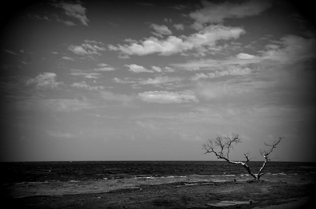 Photos: Atlantic Ocean II 6-9-19