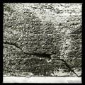 Photos: Texture 6-9-19