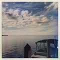 Photos: Charlotte Harbor 11-25-19
