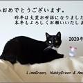 Photos: 年賀状2020年 蔵とブログ用