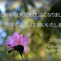 Photos: 喪中の方用_蔵 2020