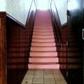 Photos: Pink Staircase 10-13-19