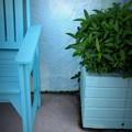 Turquoise 2-19-20