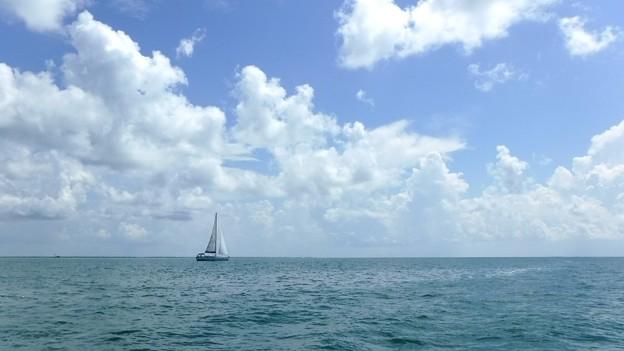 Sailboat 7-14-20