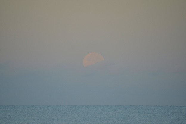 Photos: Moonset 9-2-20
