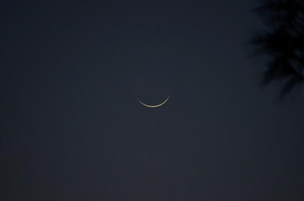 Photos: Paper Moon 10-15-20