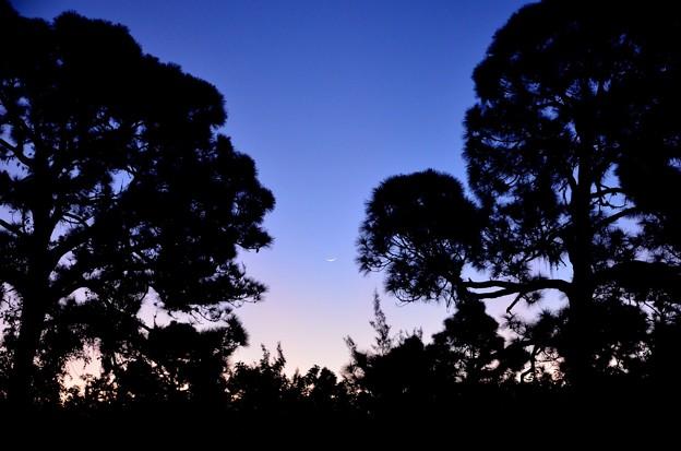 Photos: Blue Hour 10-15-20