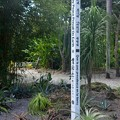 Photos: May Peace Prevail On Earth 9-20-20