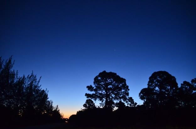 Photos: Windy Blue Hour 11-2-20
