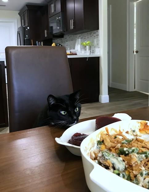 Photos: Amoreも食べたいの 11-26-20