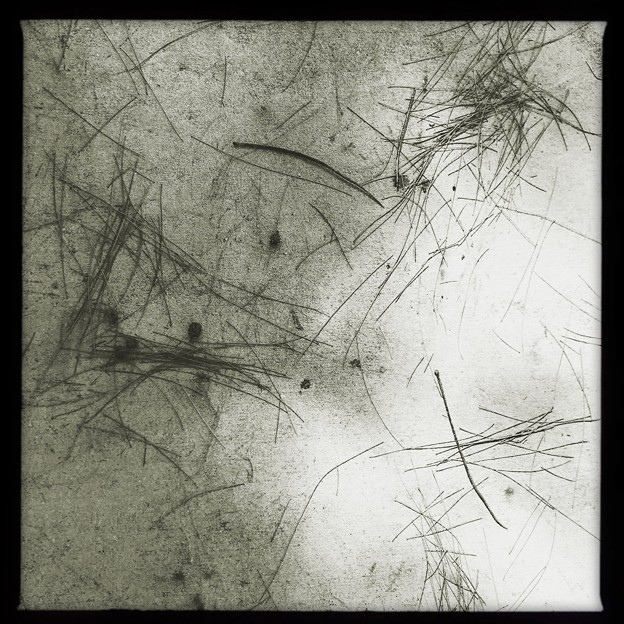 Abstruct 11-14-20