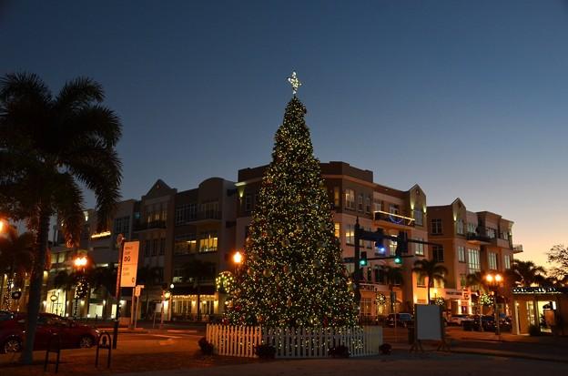 Punta Gorda Christmas Tree III 12-9-20