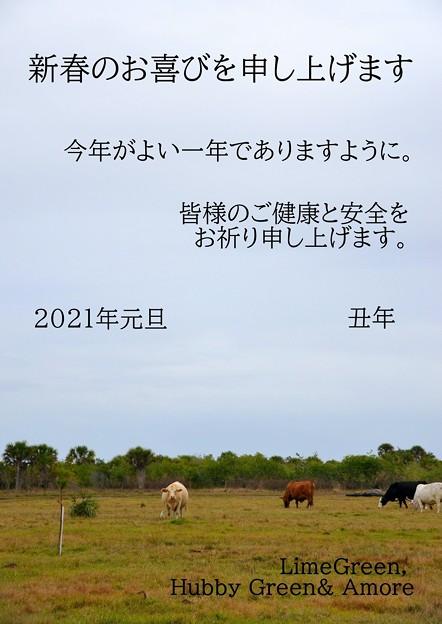 2021年_年賀状_蔵とブログ