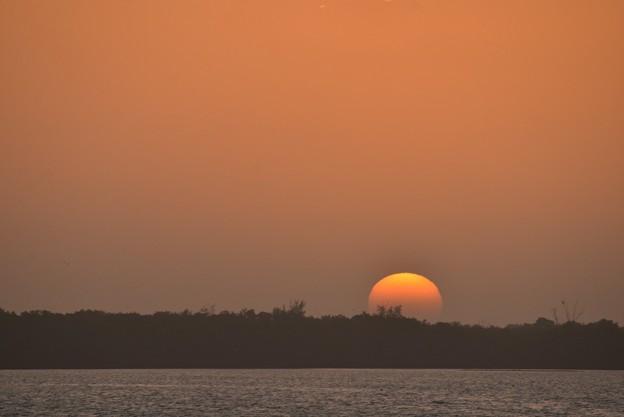 Photos: An Unnamed Island 1-1-21
