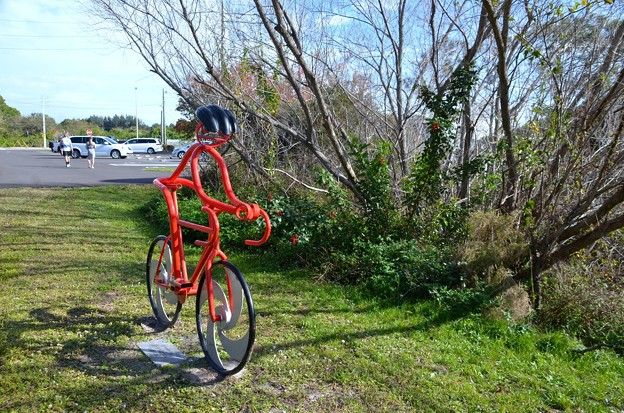 Red Bicyclist 12-31-20