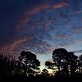 Photos: Dawn 1-15-21