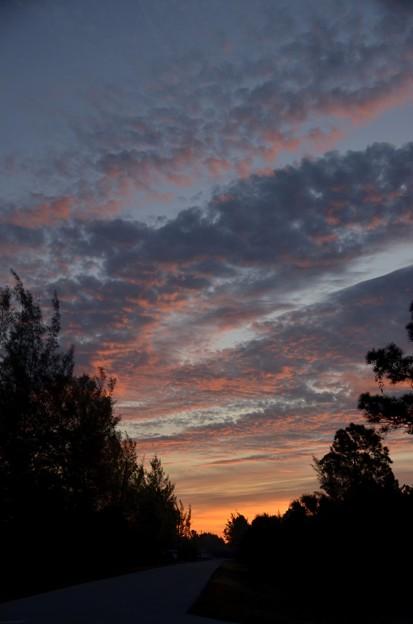 Sunrise 1-15-20