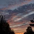 Photos: Sunrise 1-15-20