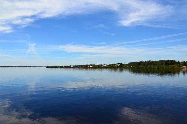 Photos: Myakka River 1-19-21