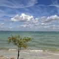 The Beach I 2-10-21