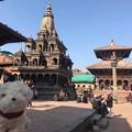 1月ネパール3