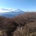 足柄峠~金時山 山頂から見た富士山