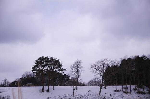 写真: IMGP5484