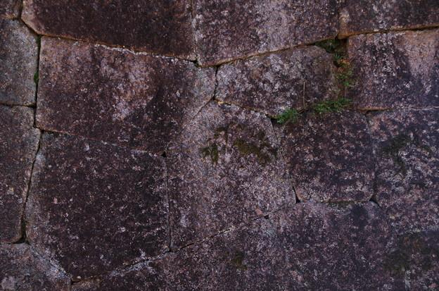 山城の石組