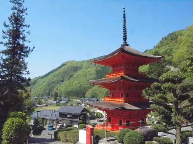 ツツジ咲く美作長福寺