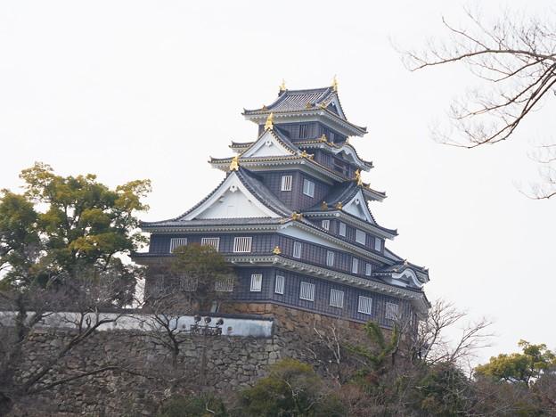 2月の岡山城眺望(2019年)