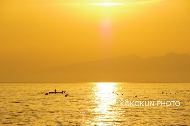 写真: オレンジ色の朝