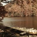 Photos: 紅葉の湖
