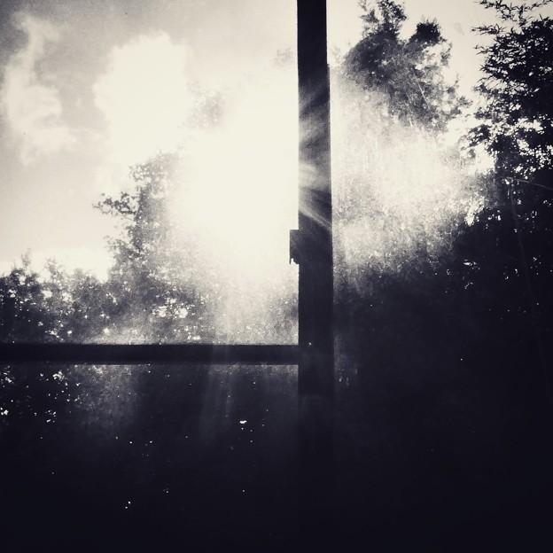 窓辺のヒカリ