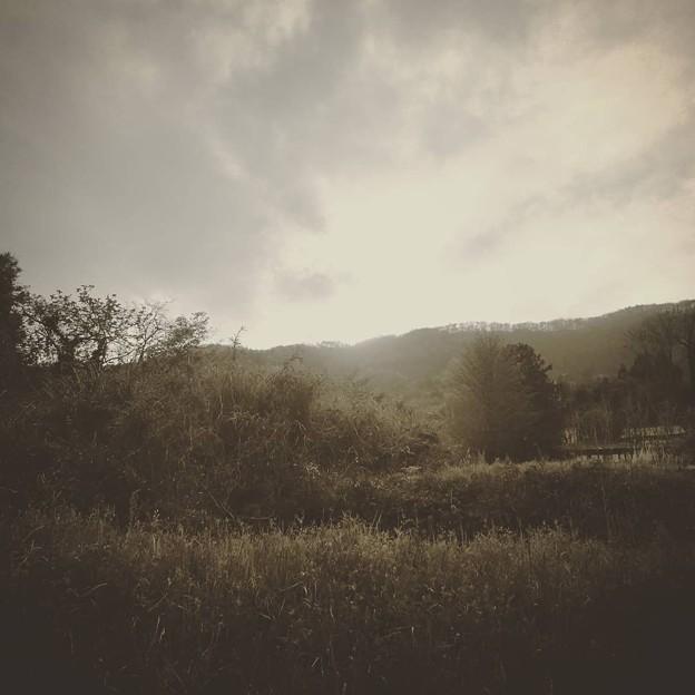 Photos: 故郷の風