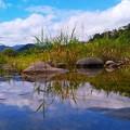 Photos: 白石川にて。