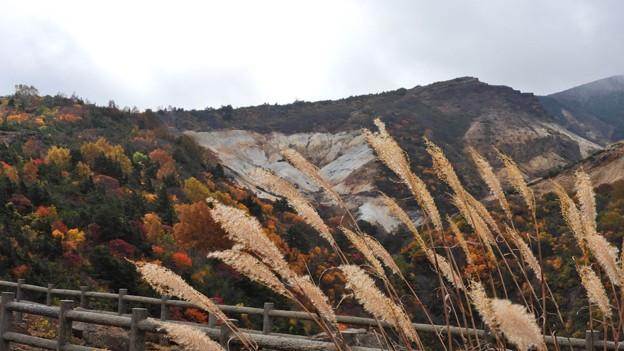Photos: 不帰の滝前