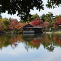 写真: 秋の佇まい
