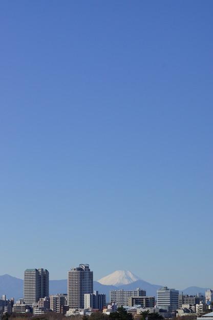 ツインタワーと富士山