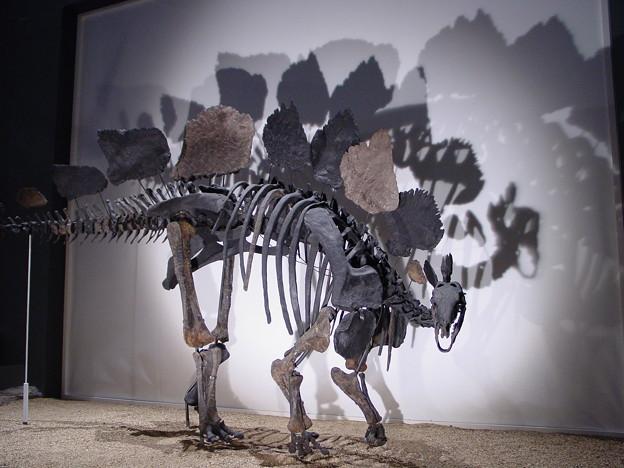 恐竜の憂鬱