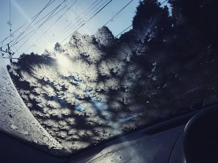 車のフロントガラスの美しい光景(寒いってことよ)