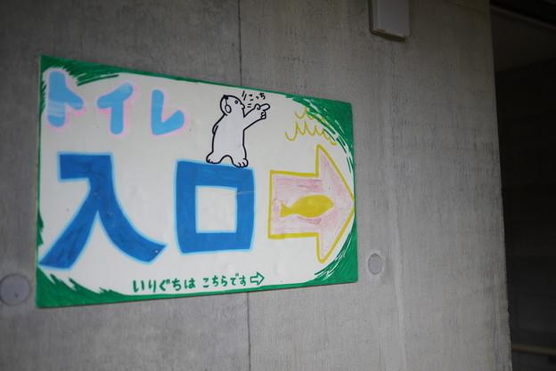 @北海道一人旅