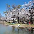 Photos: 代々木公園 CIAC0I2050