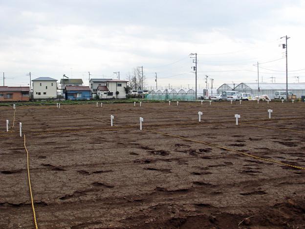 平塚市金田市民農園開園準備3