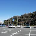 写真: 観音崎公園52
