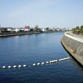 写真: 江ノ電を歩く11